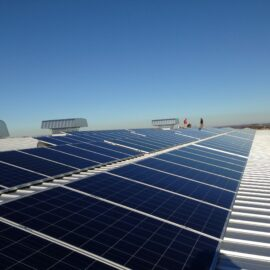 image of Nacarato-Solar
